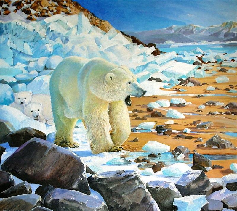ijsbeer opwarming 2